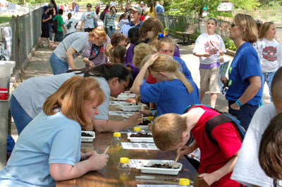 image of students at Soil Critters activity station