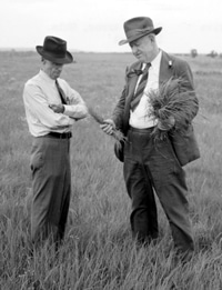 image of Hugh Bennett discussing with F.S. Hurd