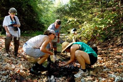 students examining the seine