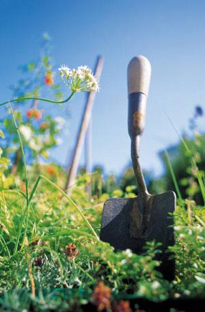 image of gardening shovel in grass