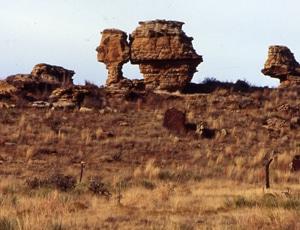 image of Oklahoma panhandle high plains rangeland