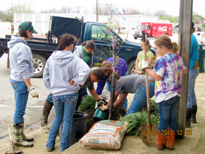 image of students planting tree