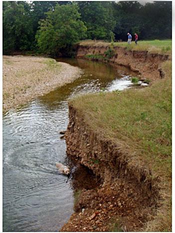 Before a streambank on Tyner Creek in Adair County.