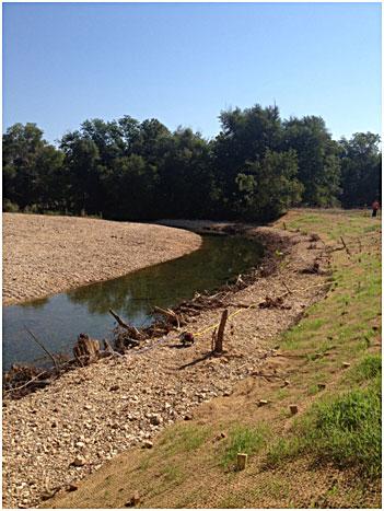 a streambank on Tyner Creek in Adair County.