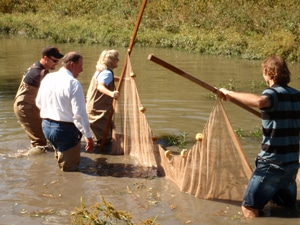 image of OCC staff seining for fish
