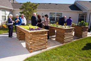 image of people visitors viewing raised bed gardens